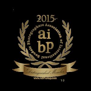 AIBP Distingquished Member Seal 2015 (1)